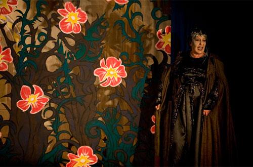 Fee Carabossas (Ruth Bannwart) freut sich: über das ganze Königsschloss wächst eine undurchdringliche Dornenhecke.